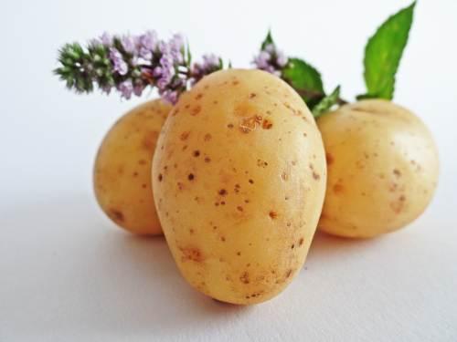 cartof2