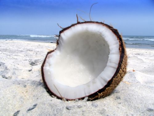 fructe-cocos
