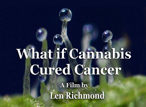 WhatIfCannabisCuredCancer