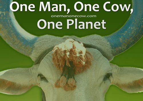 one-man-one-cow