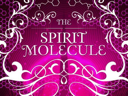 the-spirit-molecule