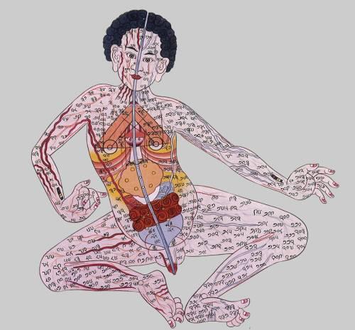 tibetan1m