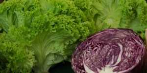 Mancarea conteaza - Hrana cruda si sistemul imunitar