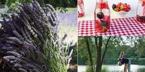 10 remedii naturale pentru reducerea durerilor de cap