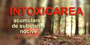 Intoxicarea (sau acumularea de substante nocive)