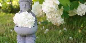 Georges Oshawa - Zen macrobiotic sau Arta intineririi si a longevitatii