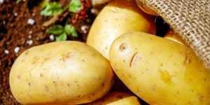 Sucul de cartofi - beneficii pentru sanatate, piele si par