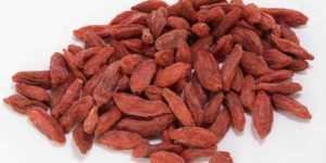 Goji - fructele longevitatii