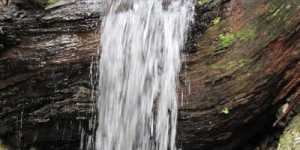 Dr. Paul C. Bragg - Apa ne poate salva viata (2)