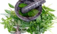 Plantele medicinale - sfaturi utile