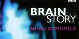 Creierul - Totul e in mintea noastra