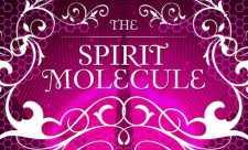 DMT - Molecula Spiritului