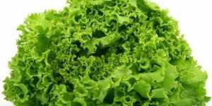 Dieta ayurvedica pentru zodia Pesti