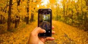Dr. Calin Marginean - Iradiaza sau nu iradiaza telefoanele mobile?