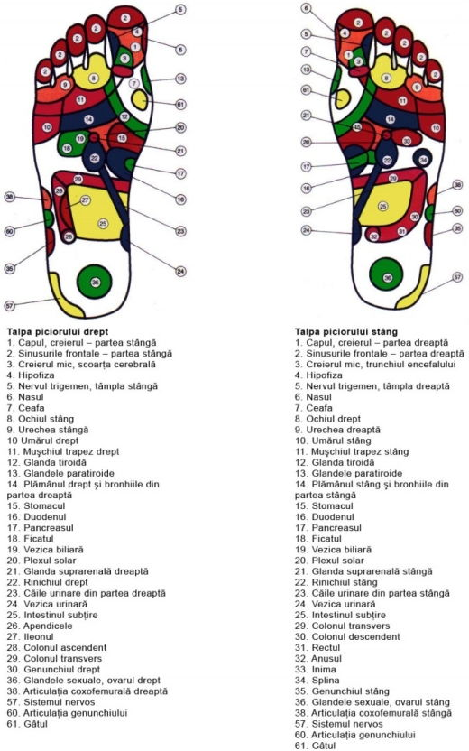 harta-reflexoterapie