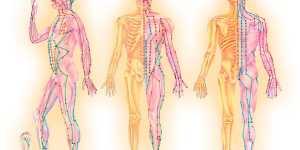 Cele 12 MERIDIANE ENERGETICE ale corpului