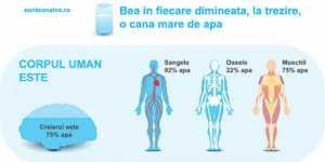 De ce deshidratarea ne transforma in persoane supraponderale si bolnave