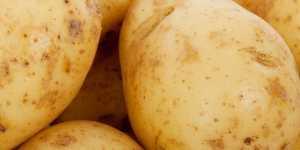 Cartoful te scapa de iritatiile pielii