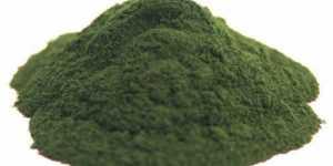 Chlorella - detoxifiant si imunostimulent eficient