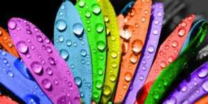 Simbolismul culorilor - generalitati