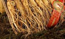 Alimente si plante medicinale care favorizeaza savurarea starii de fericire (2)