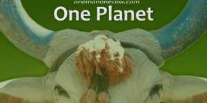 Un om, o vaca, o planeta (One Man, One Cow, One Planet, 2007)