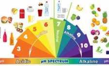 Alimente alcaline, alimente acide