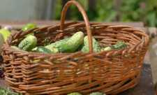 15 motive alcalinizante pentru a consuma zilnic castraveti