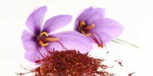 17 Proprietati MIRACULOASE ale SOFRANULUI - Condimentul Regilor