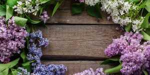 Mantrele vindecatoare - te pot ajuta atunci cand esti bolnav
