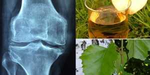 Remedii naturiste in caz de Poliartrita reumatoida