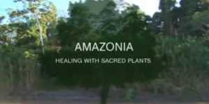 Amazonia - Vindecare cu plante sacre (Amazonia Healing With Sacred Plants, 2011)