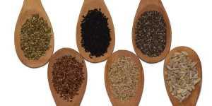 Terapia cu seminte
