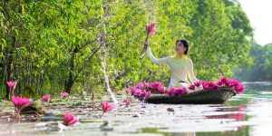 Lise Bourbeau - Ascult cu dragoste mesajele corpului meu