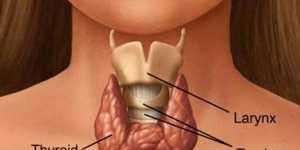 Hipertiroidismul - remedii naturale